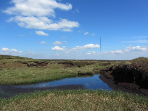 Holme Moss transmitter from Tooleyshaw Moss