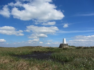 Trig point on Black Hill summit