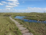 The Pennine Way footpath over Black HJill