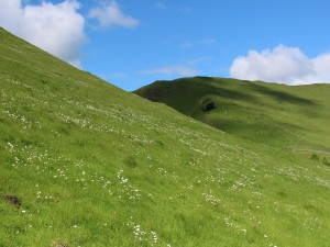 Hillside near Winnats Pass